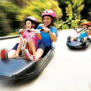 新加坡聖淘沙空中吊椅及斜坡滑車體驗票(電子票)