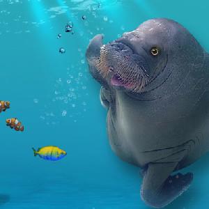 韓國一山韓華Aqua Planet水族館門票