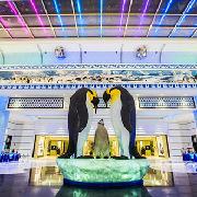 珠海長隆企鵝酒店2天1晚雙人套票(酒店+兩日無限海洋王國+《龍秀》表演+自助晚餐)