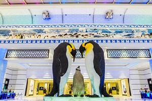 珠海長隆企鵝酒店套票(酒店+海洋王國+馬戲票+自助晚餐)