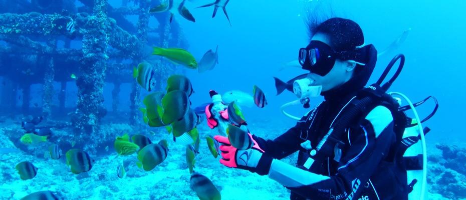 沙比島水上項目,沙比拖拽傘,沙比島紅樹林,沙巴沙比島接送,沙比島旅遊,沙比島浮潛,沙比島浮潛教練,Sapi Island,Pulau Sapi,沙比島潛水,沙比島美景,沙比島景點觀光,沙巴浮潛,沙巴潛水,沙巴深潛,亞庇浮潛,亞庇一日遊