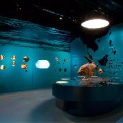 新加坡李光前自然歷史博物館門票