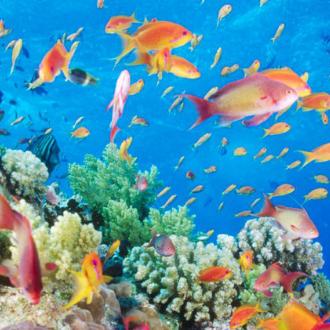 青島海底世界門票