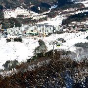 韓國維利希利Welli Hilli滑雪2天1夜游(含纜車)