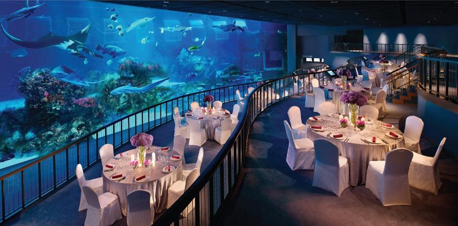 新加坡sea海洋館 新加坡海底世界 新加坡sea-aquarium 新加坡海洋館遊玩時間 新加坡聖淘沙水族館門票 新加坡海洋館門票