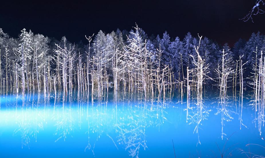 北海道夢幻點燈美瑛青池2020