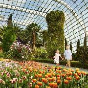 【必遊景點】新加坡濱海灣花園雙館門票