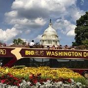 華盛頓BIG BUS雙層觀光巴士(電子票)
