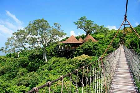 大東海國家旅遊度假區—亞龍灣熱帶天堂森林公園—亞龍灣沙灘